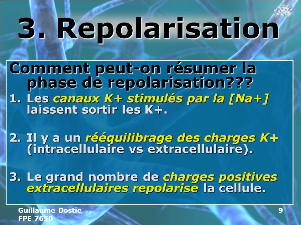 3. Repolarisation Comment peut-on résumer la phase de repolarisation Les canaux K+ stimulés par la [Na+] laissent sortir les K+.
